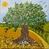 Versteckt im Olivenbaum